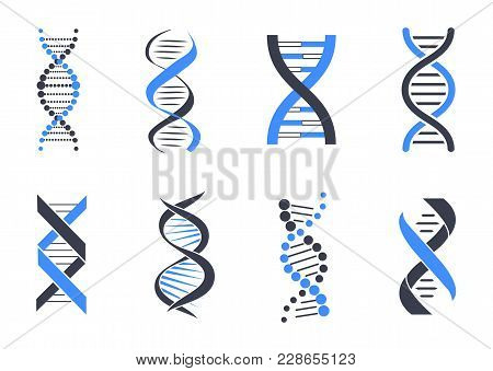 Dna Helix Patterns Colorful Vector Illustration Isolated On White Backdrop, Blue And Black Coiled Ar
