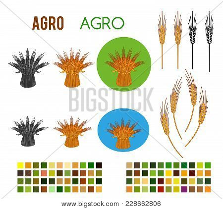 Set Editable Icon - Includes Silhouette Cereal Sheaf, Spica Spikes & Organic Agriculture With Colors