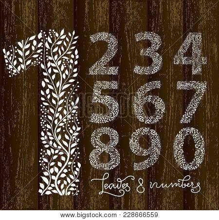 Set Of Numbers From One To Ten, Made With Hand Drawn Leaves. Vector Illustration, Part Of Collection