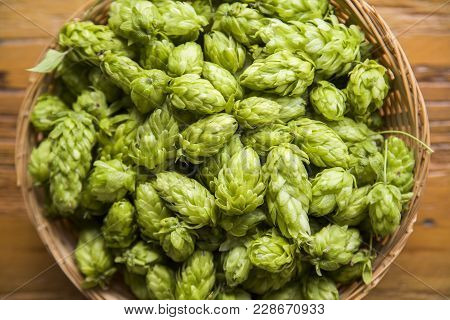 Beer Brewing Ingredients Hop Cones In Wooden Bowl And Wheat Ears On Wooden Background. Beer Brewery
