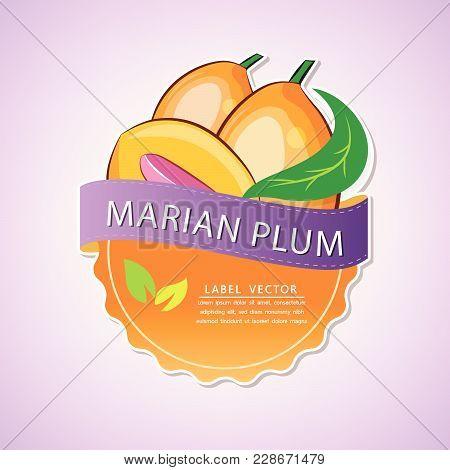 Marian Plum Fruit Label, Fruit Native To Thailand, Vector Illustration
