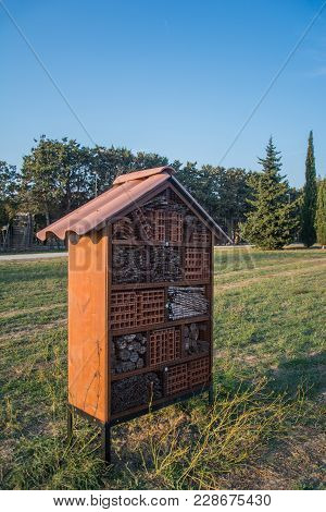 Insect House In A Park Under Blue Sky