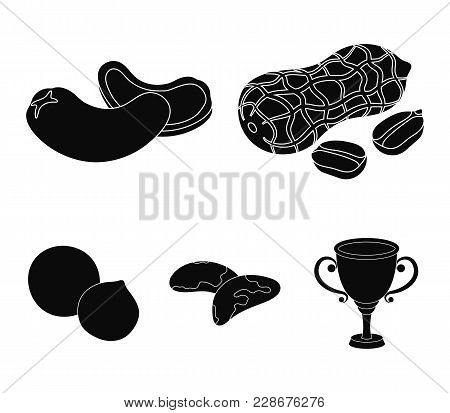 Peanuts, Cashews, Brazil Nuts, Macadamia.different Kinds Of Nuts Set Collection Icons In Black Style