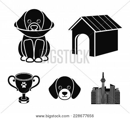 Dog House, Protective Collar, Dog Muzzle, Cup. Dog Set Collection Icons In Black Style Vector Symbol