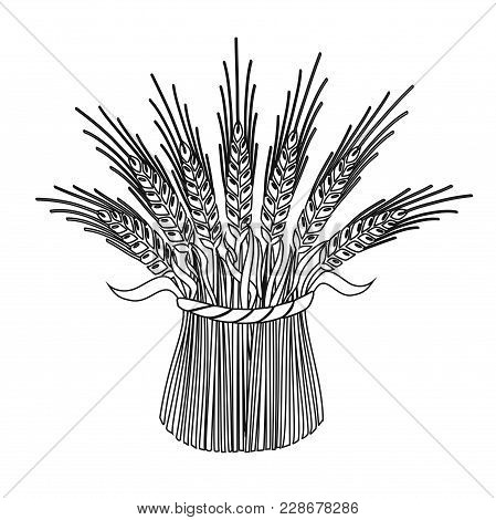 Design Elements Symbol For Agriculture & Agribusiness Firm. Monochrome Editable Sign Reap Sheaf, Iso