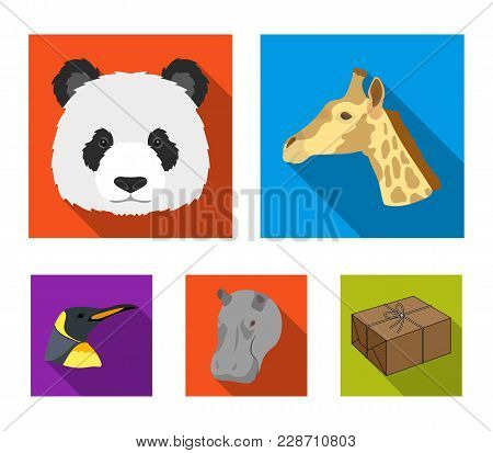 Panda, Giraffe, Hippopotamus, Penguin, Realistic Animals Set Collection Icons In Flat Style Vector S
