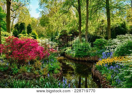 Keukenhof flower garden, also known as the Garden of Europe. One of the world's largest flower gardens. Lisse, the Netherlands.