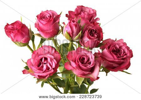 Red roses flower bouquet on white background. Isolated.
