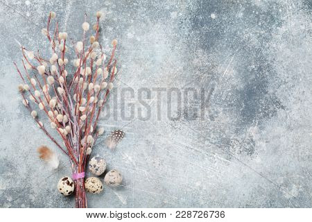 Quails eggs and pussy willow. Easter greeting card. Top view with space for your greetings