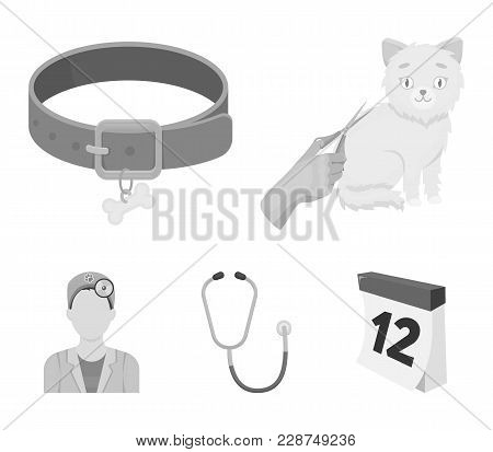 Collar, Bone, Cat, Haircut .vet Clinic Set Collection Icons In Monochrome Style Vector Symbol Stock