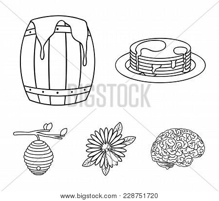 A Hive On A Branch, A Bee On A Flower, A Barrel Of Honey, A Honey Cake.apiary Set Collection Icons I