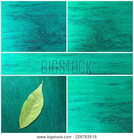 Collage Of Green Natural Texture And Paterns