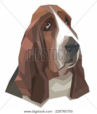 Portrait Of Basset-hound In A Geometric Style On The White Background