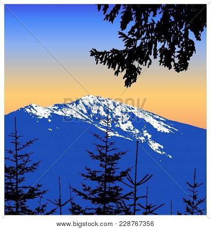 Panorama Of Mountains. Silhouette Of Mountains With Snow And Coniferous Trees. Blue And Yellow Tones