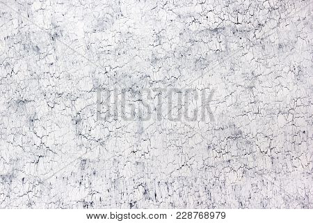 Wood Texture Background. Hardwood, Wood Grain, Organic Material Grunge Style. White, Black Texture W