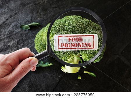 Person With Magnifying Glass Examining Broccoli With Food Poisoning Label