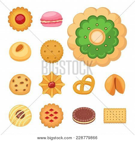 Different Cookie Cakes Top View Sweet Food Tasty Snack Biscuit Sweet Dessert Vector Illustration. Co