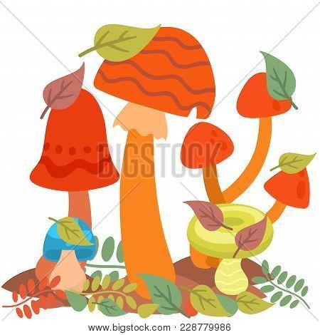 Mushrooms Fungus Agaric Toadstool Different Art Style Design Fungi Vector Illustration Red Hat. Harv