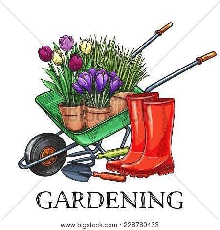 Hand Drawn Gardening Banner. Wheelbarrow, Flowers, Rubber Boots And Garden Tools In A Sketch Style.