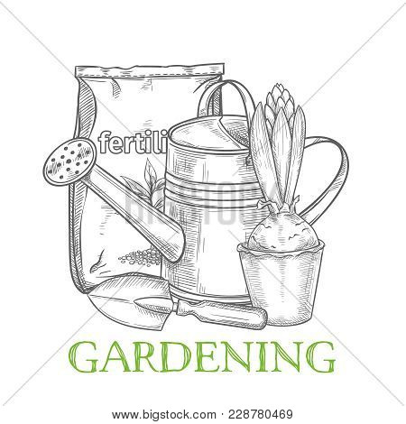 Hand Drawn Gardening Banner. Watering Can, Fertilizer, Hyacinth And Garden Tool In Sketch Style. Vec