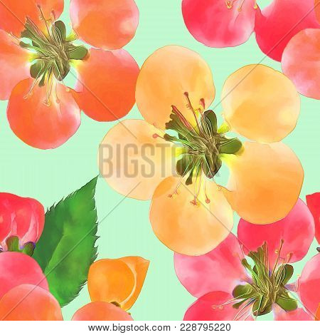 Quince, Apple Quince. Texture Of Flowers. Seamless Pattern For Continuous Replicate. Floral Backgrou