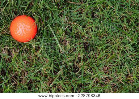 Orange Golf Ball On Green Grass. Background