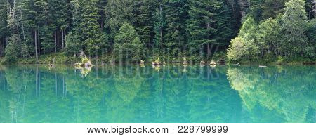 Tree reflections in blue water lake