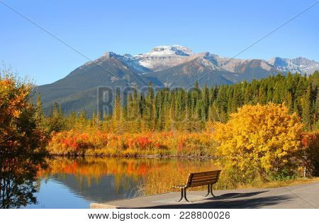 Beautiful autumn landscape in Banff national park