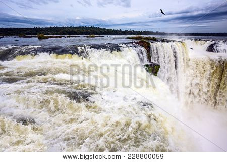 Over the rumbling waterfall Andes condors fly. Grandiose waterfalls Iguazu in the rainy season - the Devil's throat. Concept of active and photographic tourism