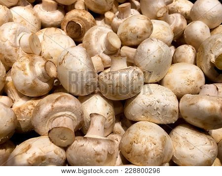 Fresh And Delicious White Mushrooms On Display In A Produce Store.