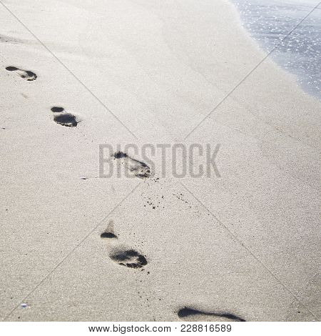 Footprints in the sand by the sea. Summer beach holiday concept. Seasonal trips to the sea or the oc