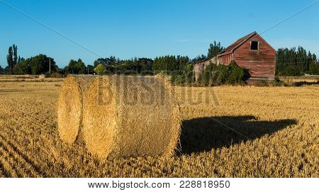 Two Round Straw Bales By A Old Farm Shed.