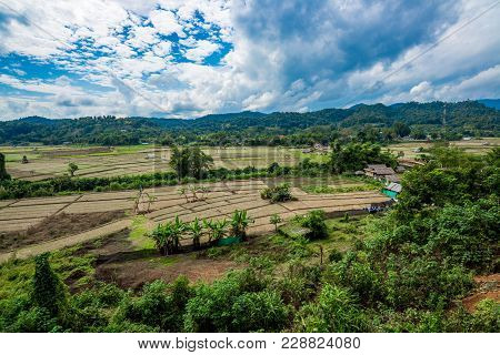 Agriculture On The Mountain In Forest With Mist And Cloudy Sky, Traveling In Thailand