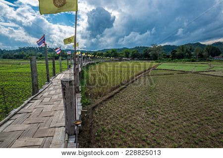 Wooden Bamboo Bridge Above The Field Of Agriculture Of Farmer For Walk Across, Thailand Landmark In