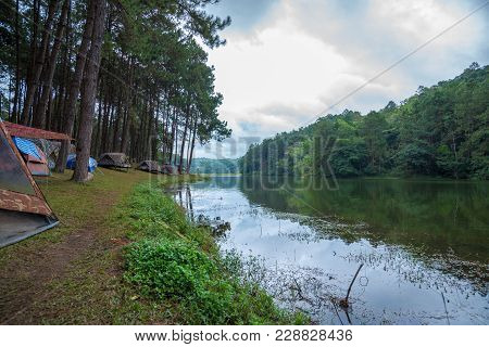 Tent For Camping In The Forest Near A River Side, Vacation In National Park In Thailand