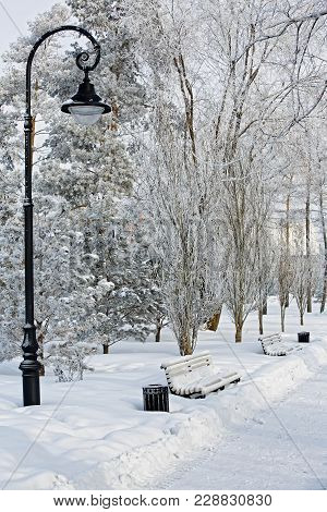 Winter City Landscape-benches And A Street Lamp Covered With Thick Snow. Winter Mood