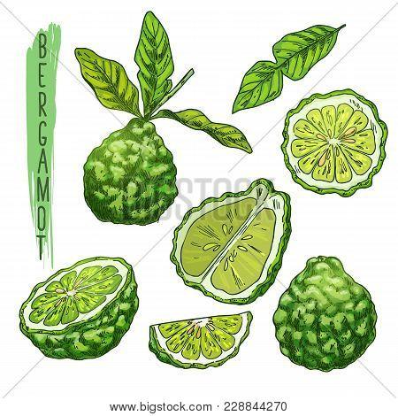 Sliced Bergamot Orange Fruit, Juicy Asian Makrut Or Raw Kaffir Lime With And Leaves, Thai Fresh Raw