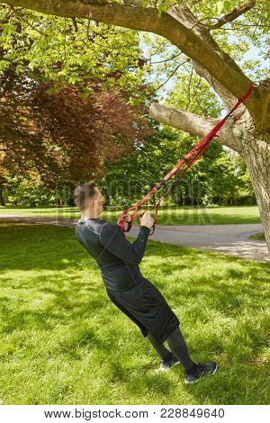 Man practice suspension training at park using tree in summer