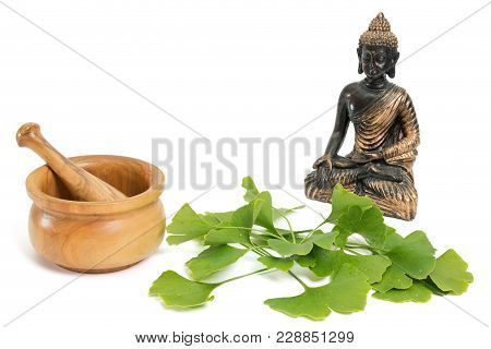 Fresh Ginkgo Leaves With Mortar And Pestle And Buddha On White Background