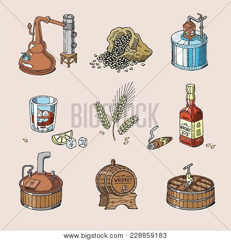 Whiskey Vector Alcohol Beverage Brandy In Glass And Drink Scotch Or Bourbon In Bottle Illustration S