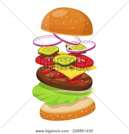 Hamburger Ingredients. Fresh Compounds, Initial Element For A Hamburger Ingredient, Cheese, Onion Sl