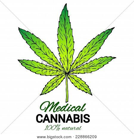 Illustration Of Medical Cannabis. Suitable For Use By Cannabis Producers In The Design Of Packaging,