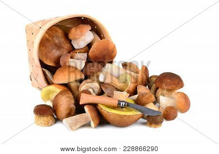 Mushrooms Spilling From A Basket With Knife On A White Background