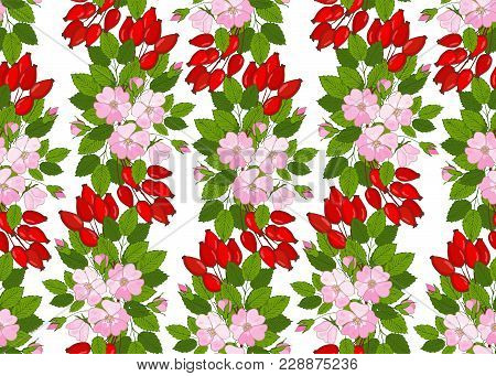 Seamless Pattern With Flowers And Berries Dogrose. Floral Background With Wild Rose. Vector Eglantin