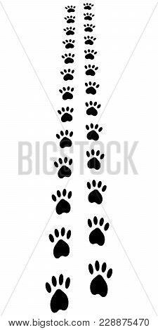 Paw Trail, Paw Prints Animal Footprints Cat Dog, Vector Disappearing Into The Distance Trail Run, Ve