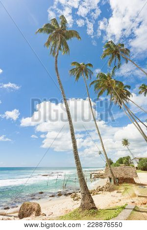 Koggala Beach, Sri Lanka, Asia - A Small Traditional House Within Palm Trees At Koggala Beach