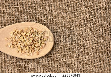 Buckwheat Grains. Wooden Spoon. Neutral Background. Healthy Food.