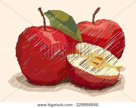 Vector Illustration Graphic Arts Sketch Of Drawing Fruit Red Apples With Half.