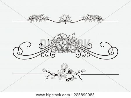 Black Hand Drawn Delicate Floristic Dividers, Line Borders With Branches, Plants, Flowers, Swirls An