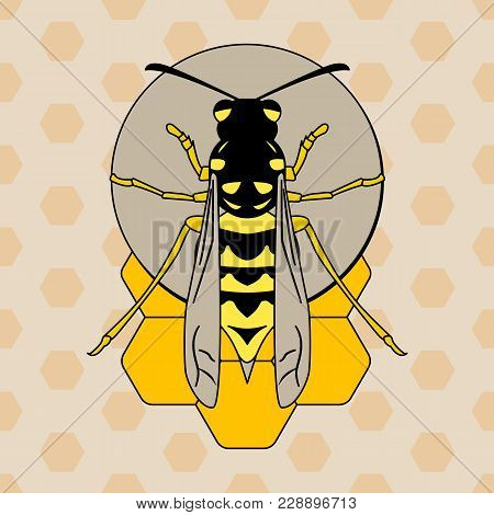Vector Image Of A Wasp Sitting On A Honeycomb In A Flat Style